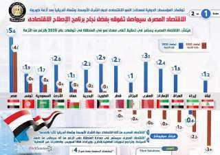 بالإنفوجراف.. ماذا قالت المؤسسات الدولية عن معدلات النمو الاقتصادي المصري بعد أزمة كورونا